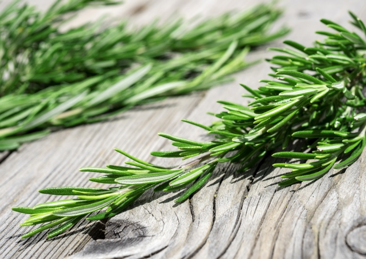 sprig of rosemary on wood